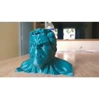 craftial curve_CC_hulk silicone mould